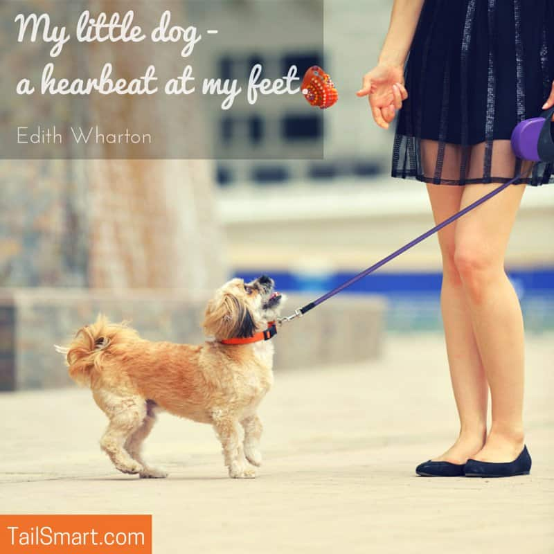 My little dog a heartbeat at my feet quote by Edith Wharton