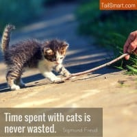 Time Spent With Cats is Never Wasted. – Sigmund Freud [quote]