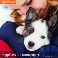 Happiness is a warm puppy – Charles Schulz [quote]