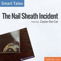 The Nail Sheath Incident featuring Caster the Cat