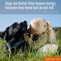 Dogs are better than human beings because they know but do not tell – Emily Dickinson [quote]
